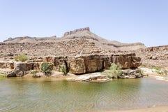 Morocco, Hamada du Draa, pond Stock Photos
