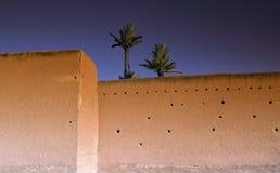 Morocco marrakech rampart. Morocco palm tree on marrakech rampart Stock Photo