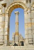 Morocco Roman ruins. Columns  in VOLUBILIS Stock Image