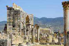 Morocco Roman ruins. Columns  in VOLUBILIS Royalty Free Stock Images