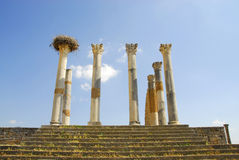 Morocco Roman ruins stock image