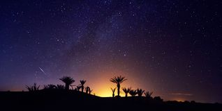 Morocco Sahara desert starry night sky over the oasis. Travelling to Morocco. Glow over the palm trees of the oasis. Billions