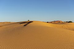 Morocco. Sand dunes of Sahara desert royalty free stock photo