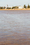 In morocco  sea   ocean wave and  bird Stock Photo