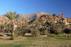 morocco tafraoute Arkivfoto