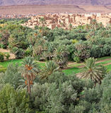 Morocco, thousand Kasbahs area Royalty Free Stock Image