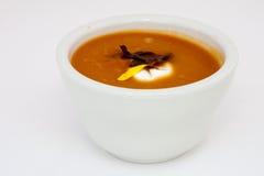 morot kryddad kyld soup arkivbild