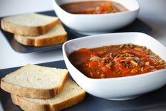 morotlegumelin annat stew Fotografering för Bildbyråer