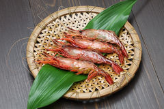 Free Morotoge Shrimp, Shima Ebi, Japanese Seafood Royalty Free Stock Photography - 66572867