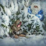Morozko noticed Nastya sitting under the tree