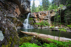Morressey Falls Waterfall in the sub alpine forest in Fernie British Columbia. Serene waterfall found in the subalpine wilderness in Fernie British Columbia royalty free stock image