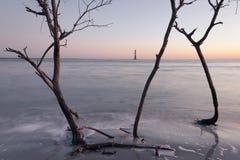 Morris Island Lighthouse at sunrise royalty free stock images