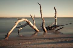 Morris wyspy latarnia morska przy wschodem słońca zdjęcia royalty free