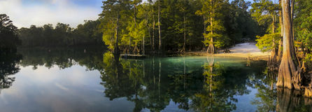 Morrison Springs Down River Panoramic Royalty Free Stock Photography