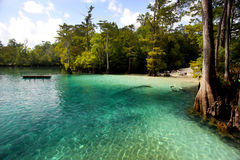 Morrison Springs Scenic. Locals show up early to the Morrison Springs state park beach site to enjoy the crystal clear 69 degree waters. There is a cavern and Stock Photo