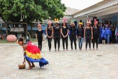 Morro印地安考古学站点重创在里约热内卢 免版税库存照片