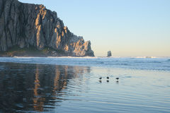 Morro Bay Stock Images