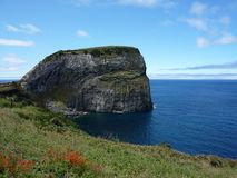 Morro de Castelo Branco (Azores) royalty free stock photo