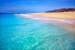 Morro Jable Matorral plaża Jandia w Fuerteventura Zdjęcia Stock