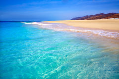 Morro Jable Matorral strand Jandia i Fuerteventura Arkivfoton
