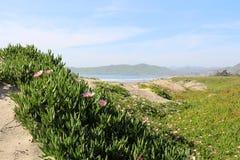 Morro Zatoka Zdjęcie Stock
