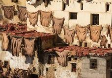 Morrocan皮革厂在Fes 图库摄影