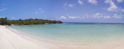Morrocoy National park, a paradise with coconut trees, white san Royalty Free Stock Images