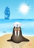 Morsa żeglarz ilustracji