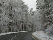 Morsa del carnaval del Año Nuevo de los días de fiesta del clima de la estación de la nieve del invierno Imágenes de archivo libres de regalías
