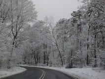 Morsa del carnaval del Año Nuevo de los días de fiesta del clima de la estación de la nieve del invierno Fotos de archivo