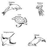 Morscy mieszkanowie z imionami Ołówkowy nakreślenie ręką Fotografia Stock