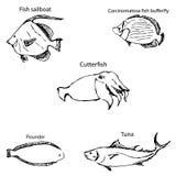 Morscy mieszkanowie z imionami Ołówkowy nakreślenie ręką Obraz Stock
