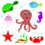 Morscy zwierzęta Zdjęcia Stock