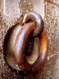 Morsetti del ferro Fotografie Stock