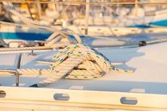 Morska kępka fotografia royalty free