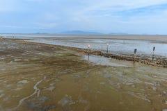 Morski krajobraz przy niskiego przypływu wodą obraz royalty free