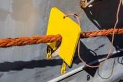 Morski szczura strażnik zdjęcie royalty free