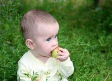 morso del bambino della mela piccolo Fotografia Stock