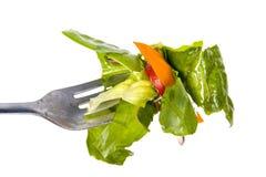 Morso dell'insalata sulla forcella fotografia stock
