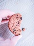 Morso della briciola del biscotto fotografia stock libera da diritti
