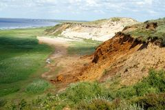 Morsum sandy cliff grass. Sandy Morsum cliff on Sylt Germany stock photo