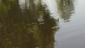Morsure de pêche de mouvement dans la surface de l'eau banque de vidéos