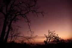 Mort sur le coucher du soleil photo stock
