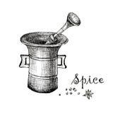 Mortaio d'annata e spezia, illustrazione disegnata a mano Fotografia Stock