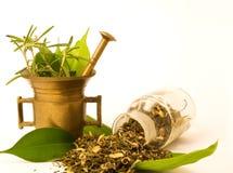 Mortaio e vetro, con di erbe. immagine stock