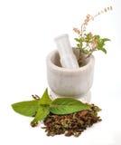 Mortar. Basin herbal in mortal around herbals Royalty Free Stock Photos
