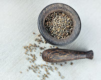 Mortar. And coriander still life Royalty Free Stock Images