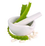 Mortar with aloe vera leaves and pills.. Royalty Free Stock Images