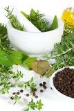 Mortar And Pestle With Fresh Herbs Royalty Free Stock Images