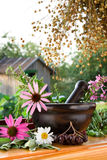 Mortar And Pestle With Healing Herbs Royalty Free Stock Photo
